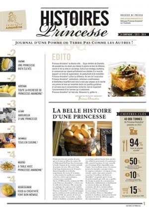 Histoires_de_Princesse-Page_de_couv_400pix-9a79a